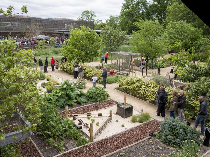 Les jardins du mus um ensemble baroque de toulouse - Les jardins du museum toulouse ...